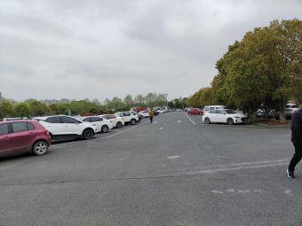 观潮胜地公园停车场