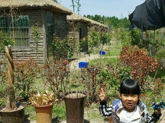 屠苏岛生态园