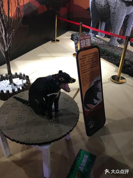 乐高动物王国环保展鸟巢站图片 - 第28张