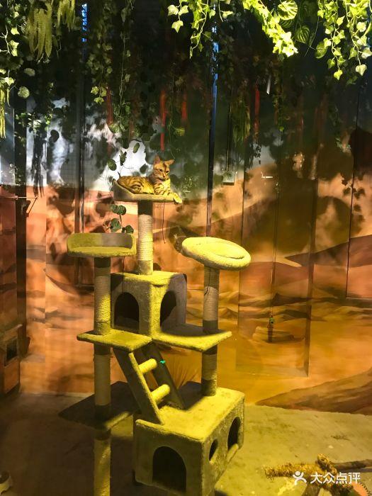 嗒咪动物奇幻乐园(杭州店)图片 - 第142张