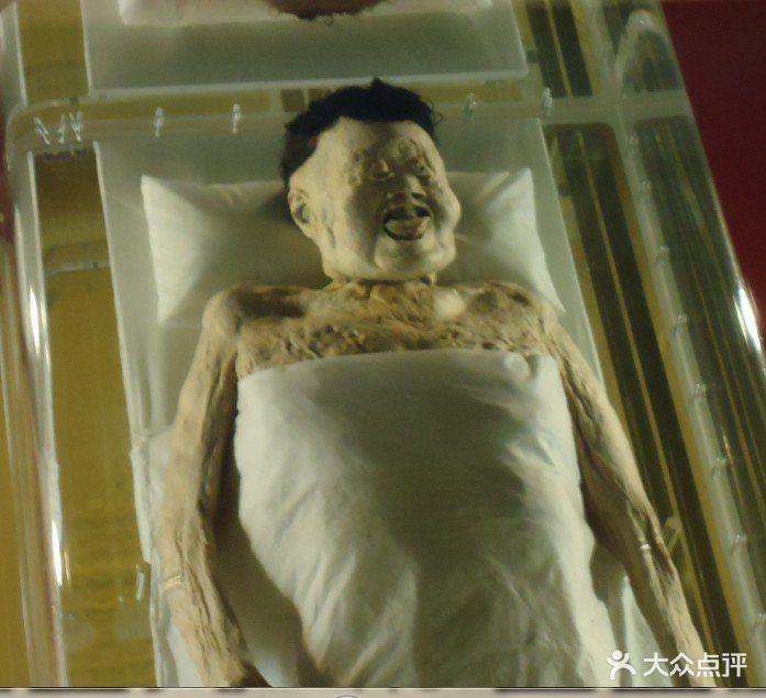湖南省博物馆女尸图片