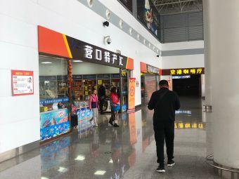 营口兰旗机场