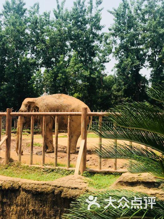 南昌新动物园图片 - 第2张