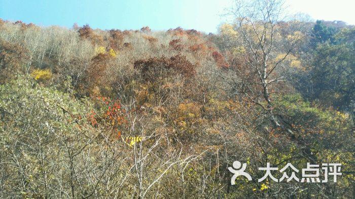 二龙山风景区-停车场-图片-榆中县生活服务-大众点评