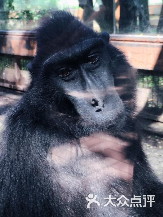 北京动物园图片 - 第9308张