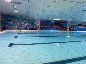 涉外游泳馆