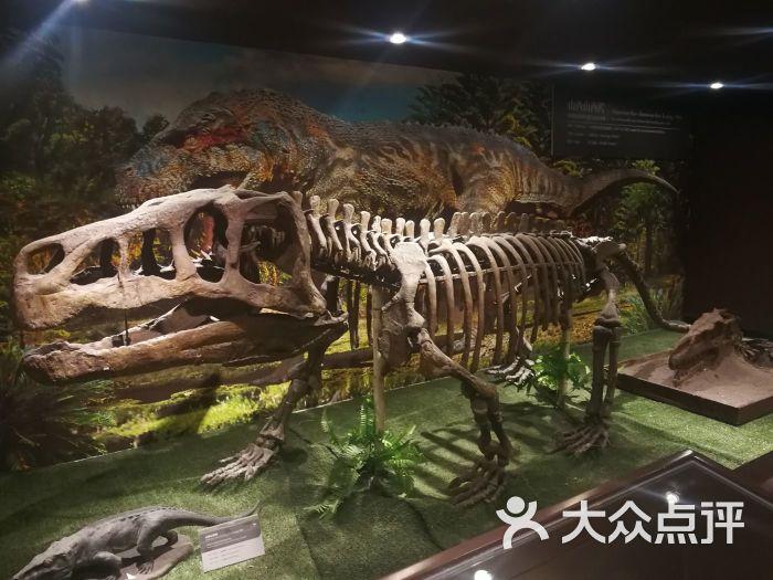 中国古动物馆图片 - 第2张