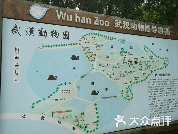 武汉动物园图片 - 第1张