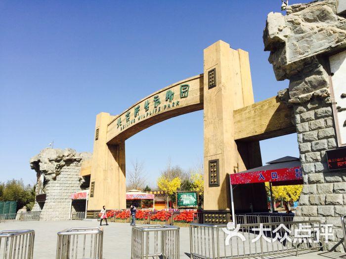 北京野生动物园-售票处图片 - 第232张