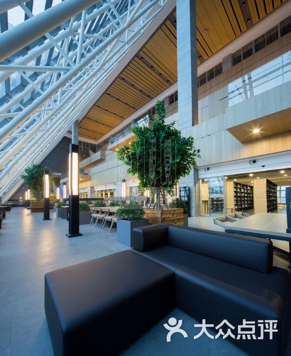 铜陵市图书馆(新馆)中庭图片 - 第134张图片