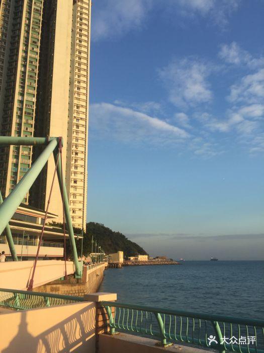 海怡半岛-图片-香港景点-大众点评网