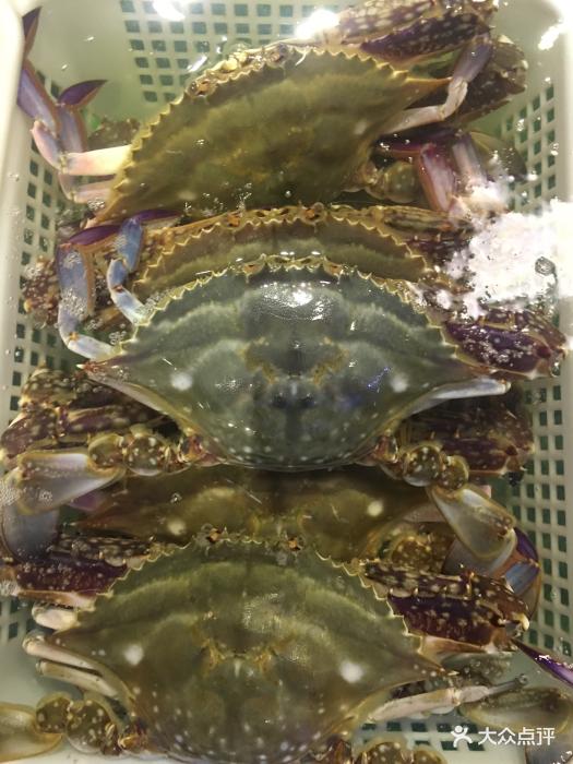 海中鲜的全部点评-宝坻区美食什么好美食夏季吃图片