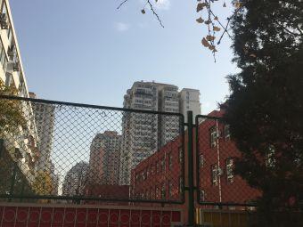 北京金色摇篮全程实验学校