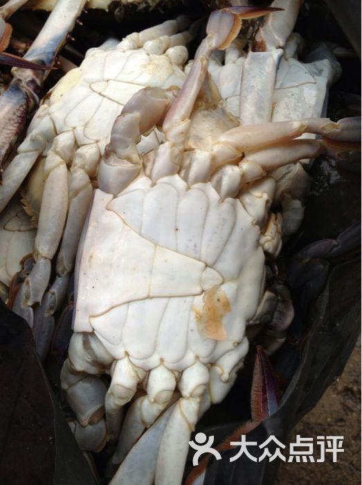 密密海鲜外送竹节虾图片-北京海鲜-大众点评网