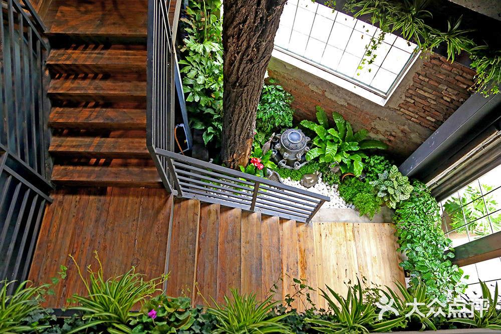 室内空间绿化 绿植租摆泥养我工业风室内空间绿化案例图片 - 第6张图片