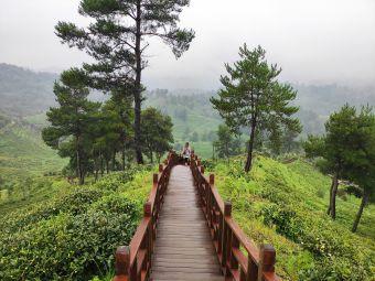 贵阳花溪区久安乡九龙山观光旅游景点