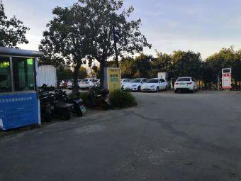 红树林生态公园电动汽车充电站1