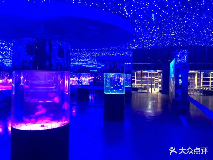嗒咪动物奇幻乐园(杭州店)图片 - 第26张