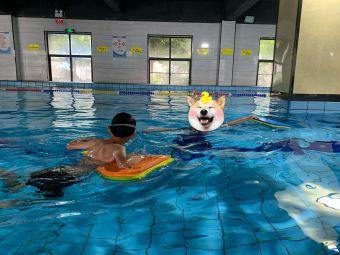 阳光游泳健身