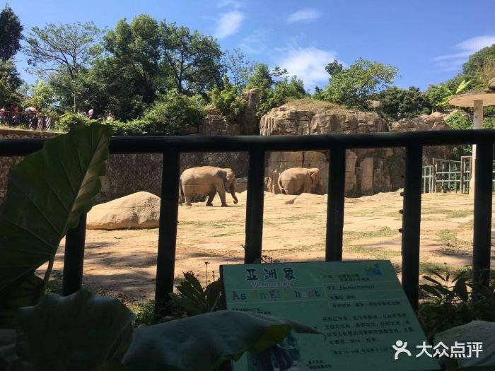 福州动物园图片 - 第7张