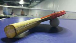 宏亮乒乓球俱乐部,好不好的赛马默认-运顶级点评牧场中文版图片