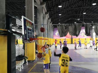 酷柏篮球训练营
