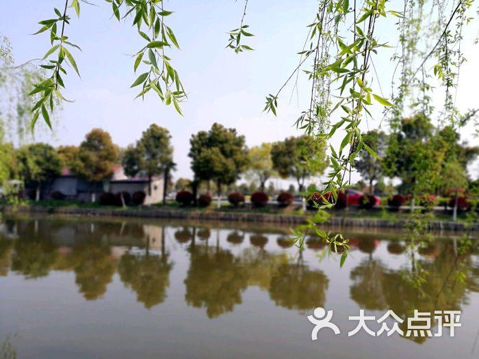 桃花岛福临农家乐图片 - 第2张