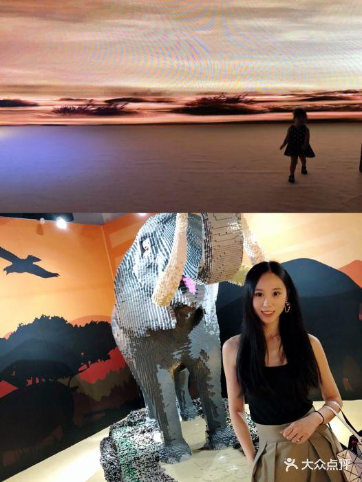 乐高动物王国环保展鸟巢站-图片-北京亲子-大众点评网