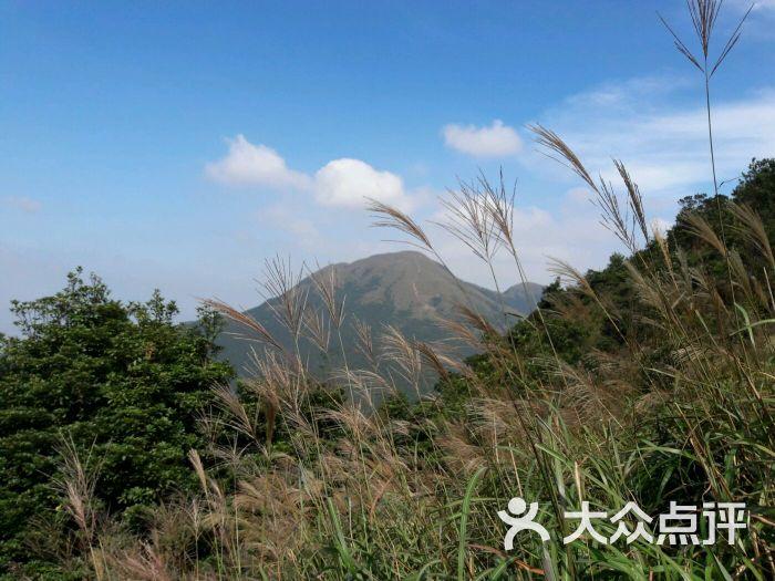 银屏山森林公园-图片-东莞周边游-大众点评网