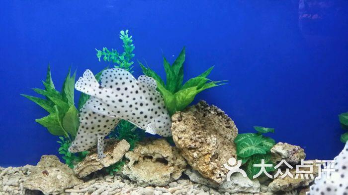 石家庄动物园海洋馆图片 - 第375张