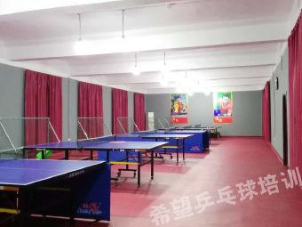 希望乒乓球培训中心
