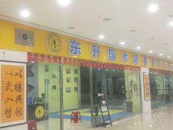 东升国术咏春拳育人馆