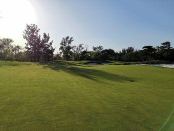 京都高尔夫俱乐部停车场