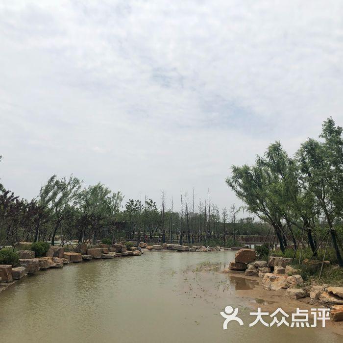 千鹤湖公园