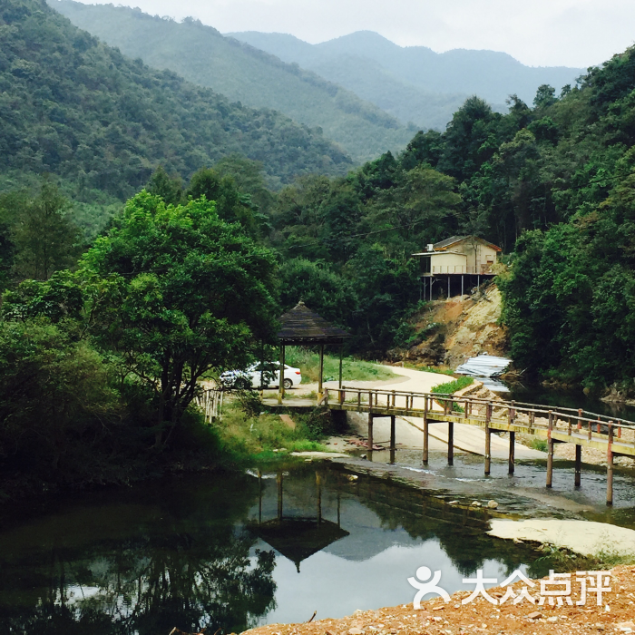 灵溪河森林公园-图片-仁化县周边游-大众点评网