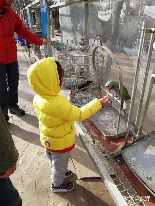 美神宫动物园图片 - 第31张