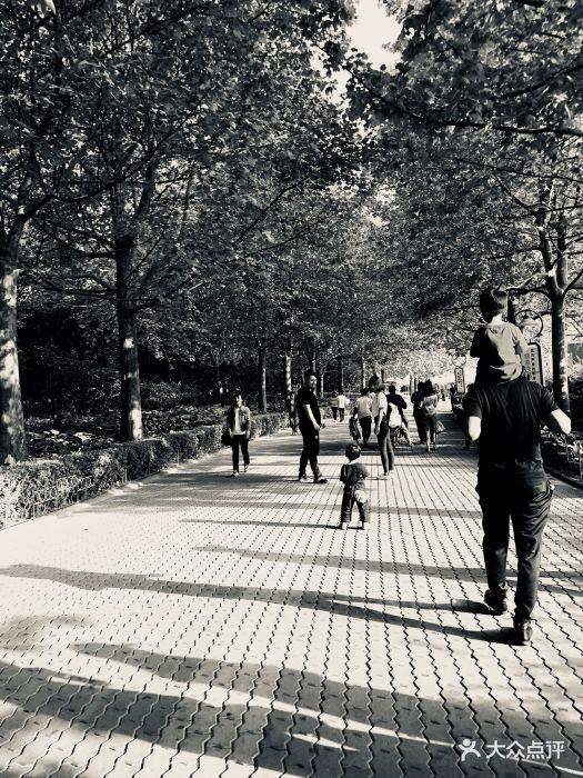 朝阳公园亲子动物园图片 - 第664张