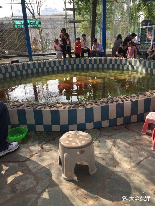 朝阳公园亲子动物园图片 - 第56张