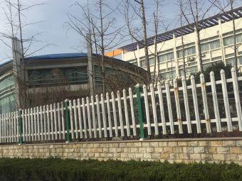 淄博市修文外国语学校(小学部)