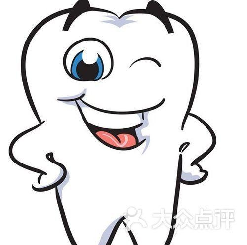 牙齿结构图简笔