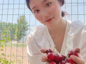 鞠伟樱桃采摘园