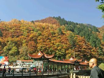 兴隆山自然保护区-售票处