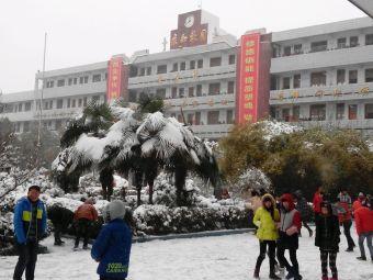 新野县实验中学