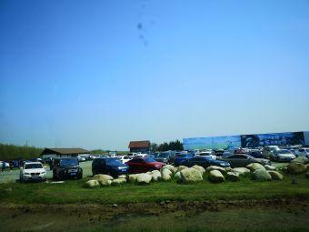 东滩湿地公园停车场