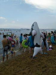 白沙湾海滨浴场的全部评价 盖州市图片
