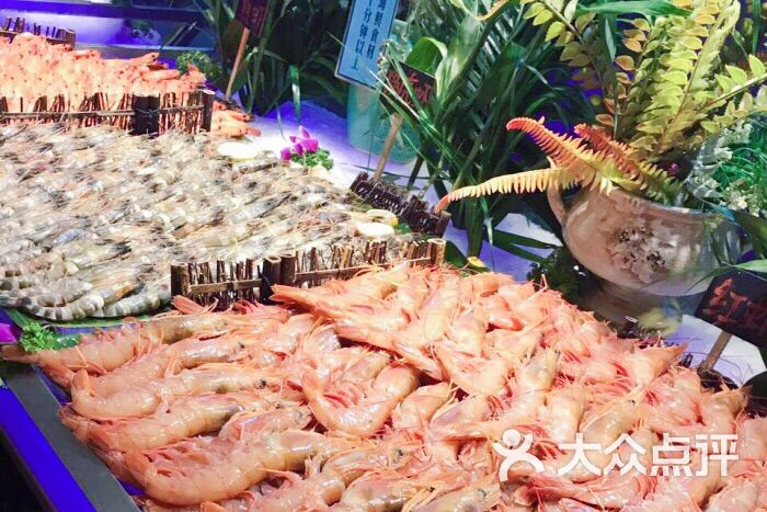 五月罗马海鲜自助餐厅(月星环球港店)的点评
