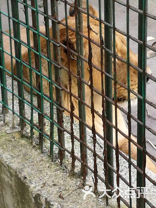 泰州市动物园图片 - 第10张