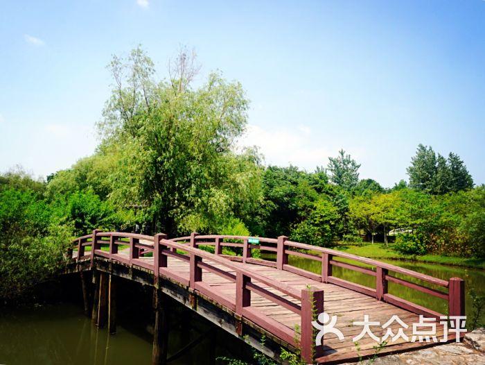 溧水天生桥风景区-图片-南京周边游-大众点评网