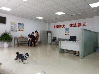 养犬登记服务点