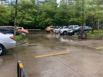 滨海公园停车场